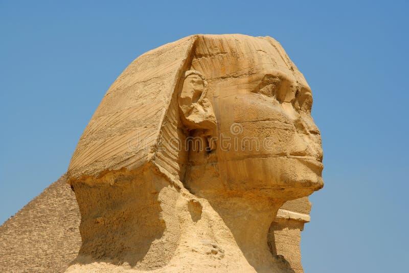 egipski sfinks zdjęcia royalty free