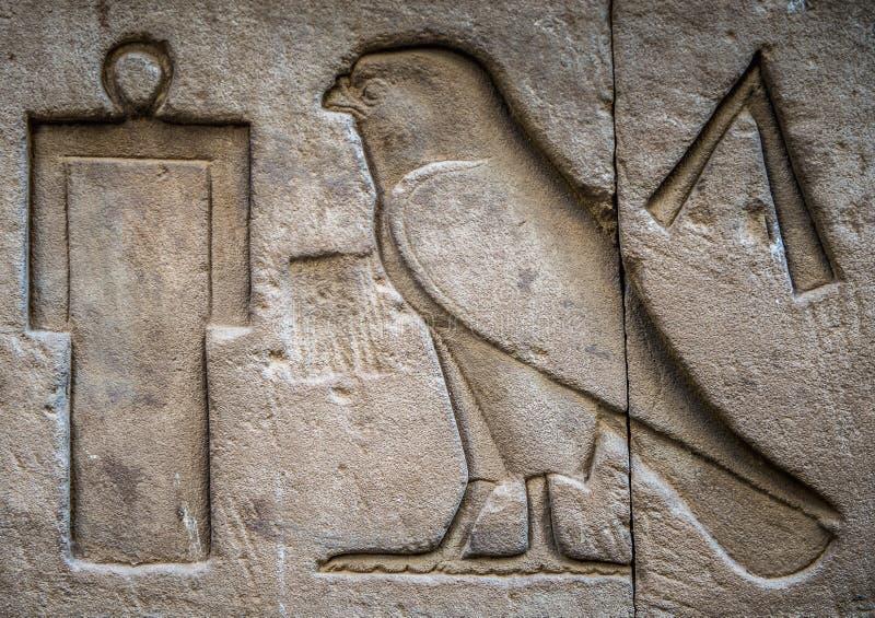 egipskie hieroglify ilustracja wektor