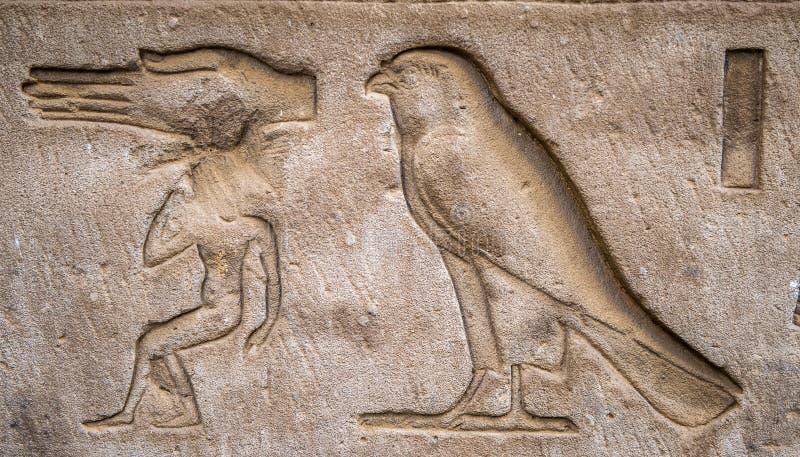 egipskie hieroglify ilustracji