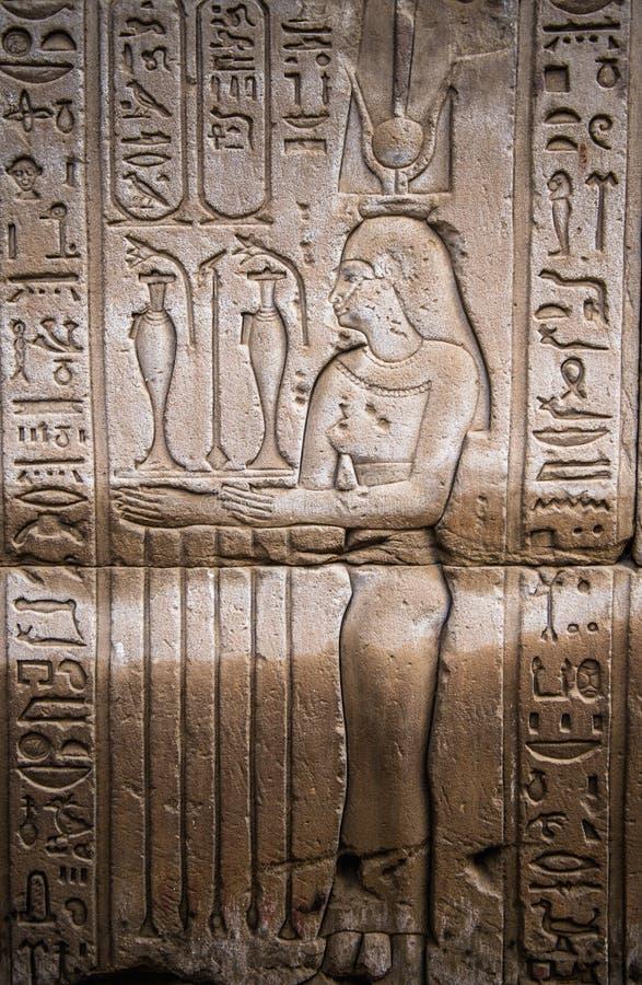 egipskie hieroglify royalty ilustracja