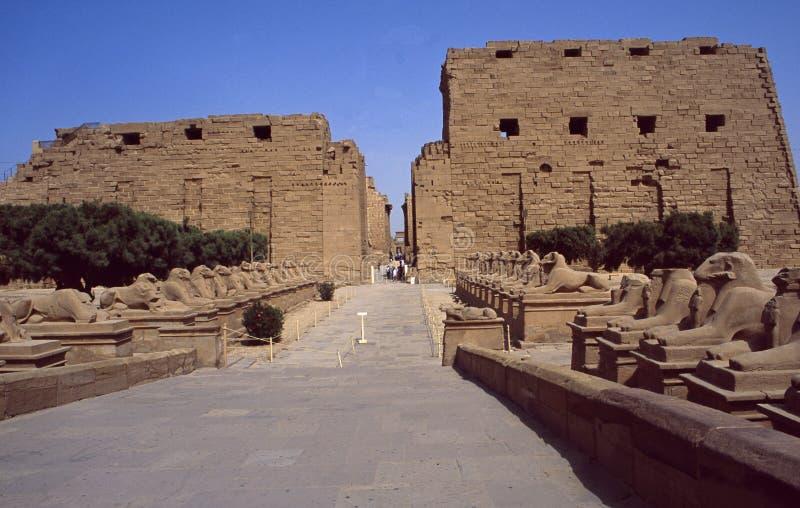 Egipt: Unesco światowe dziedzictwo Tempel ponowny w Karnak blisko Luxor obrazy royalty free