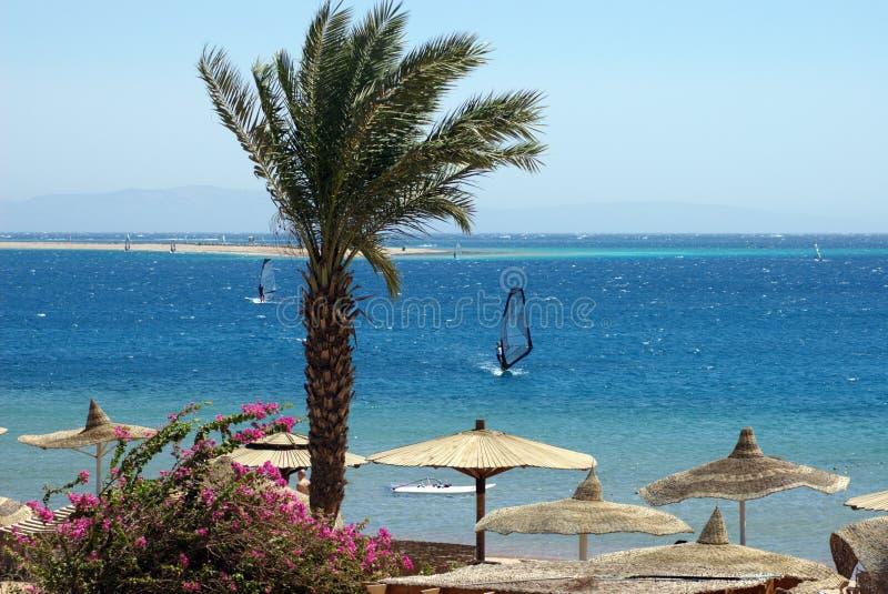 Egipto, Dahab, península del Sinaí. Mar Rojo. imagen de archivo libre de regalías
