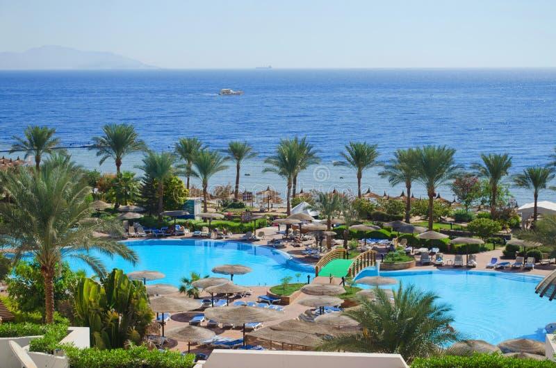Egipto, Mar Rojo. Sharm el-Sheikh imagen de archivo libre de regalías