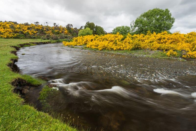 Eglinton河弯曲在草原谷在令人沮丧的云彩下 免版税库存照片