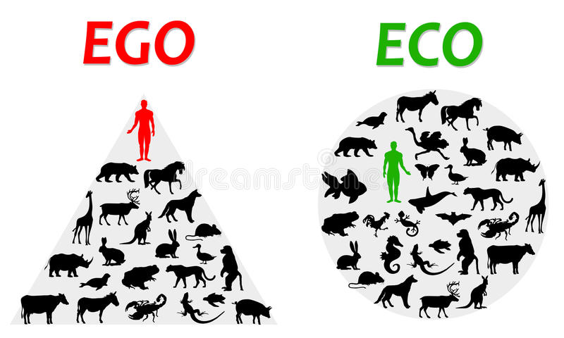 Ego und eco vektor abbildung