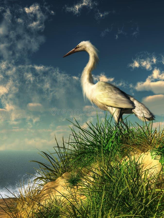 Egret em uma duna gramínea ilustração royalty free