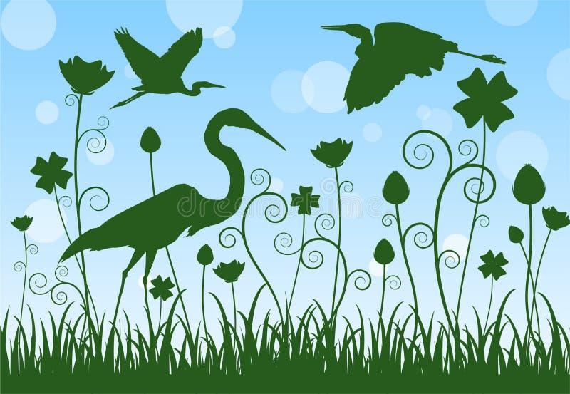 Egretta della siluetta in prato illustrazione vettoriale