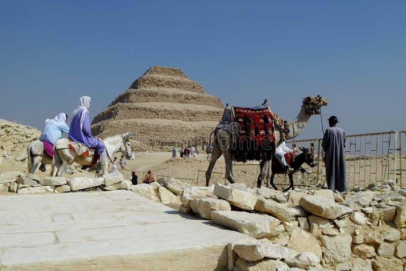 Download Egypt stock image. Image of tomb, dromedary, zoser, desert - 4589159