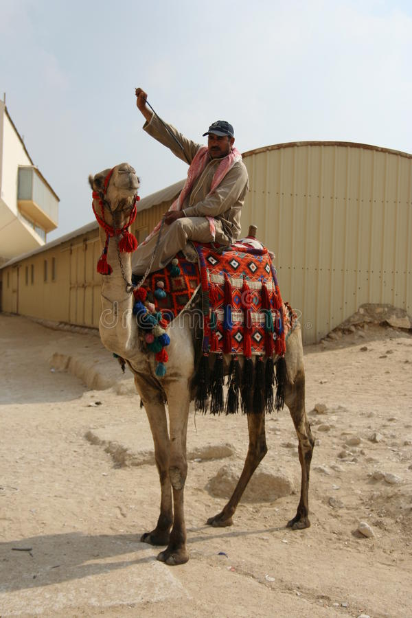 Download Egypt Camel Rider editorial stock image. Image of architecture - 24608009