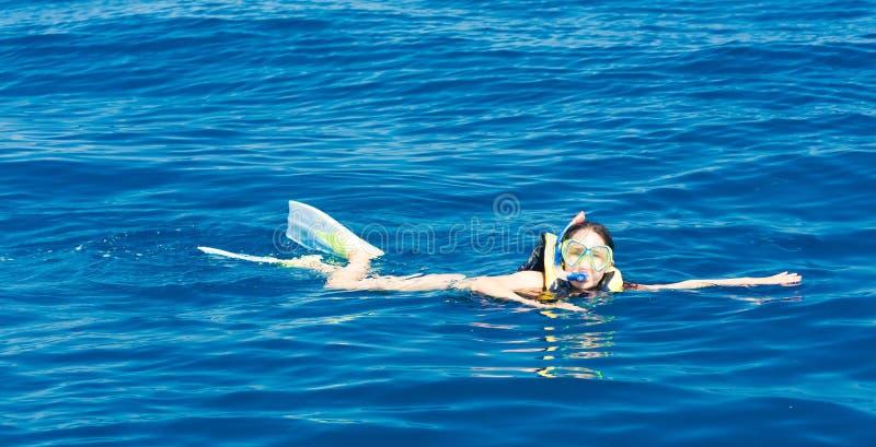 Egypt Dia de Mar Vermelho, mergulhando fotos de stock royalty free