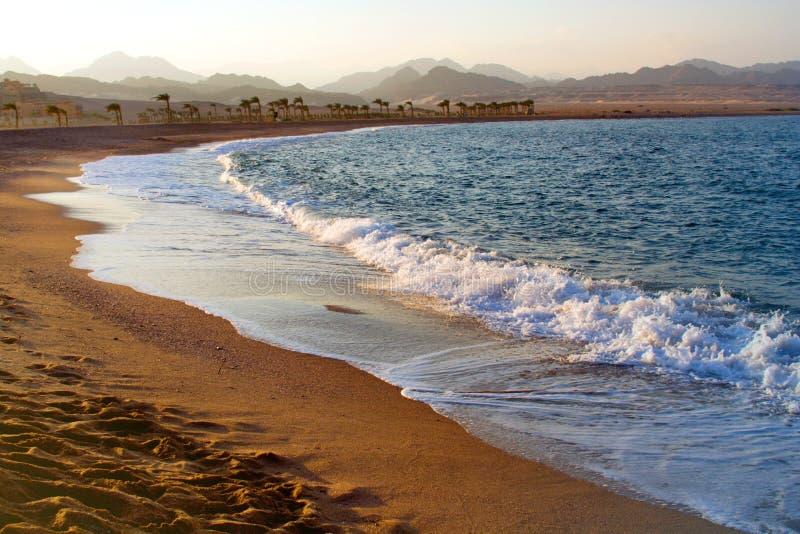 Egypt. Nabq bay stock image