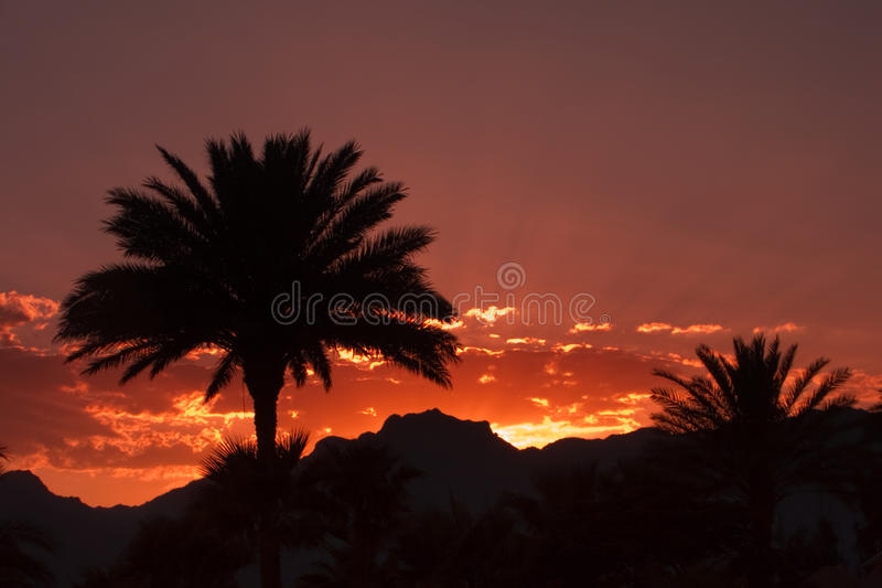 Download Egypt stock photo. Image of silence, nuweiba, relaxation - 30039592