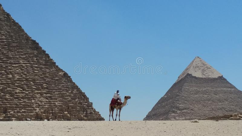 Egypt pyramid Gyza Chefren stock photos