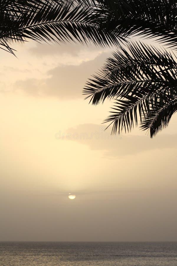egypt soluppgång arkivfoto