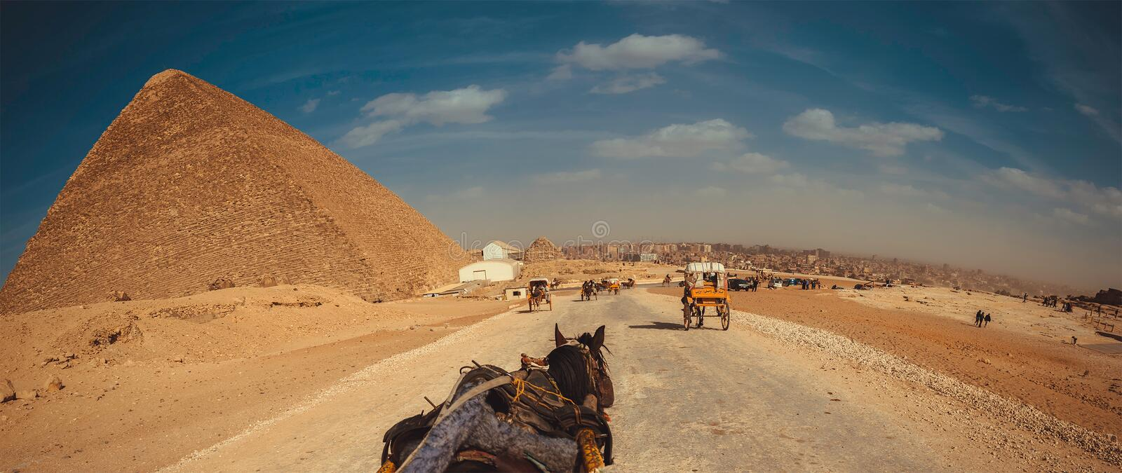 Egypt. A trip in Egypt and the pyramids royalty free stock photos