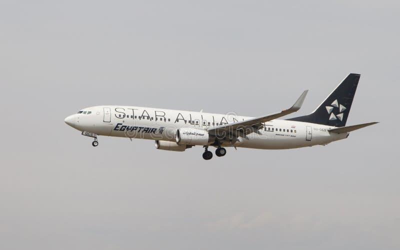 Egyptair Boeing 737 Star Alliance royalty free stock photos