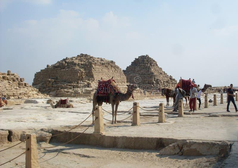 Egypte is een land van Piramides en geschiedenis royalty-vrije stock fotografie