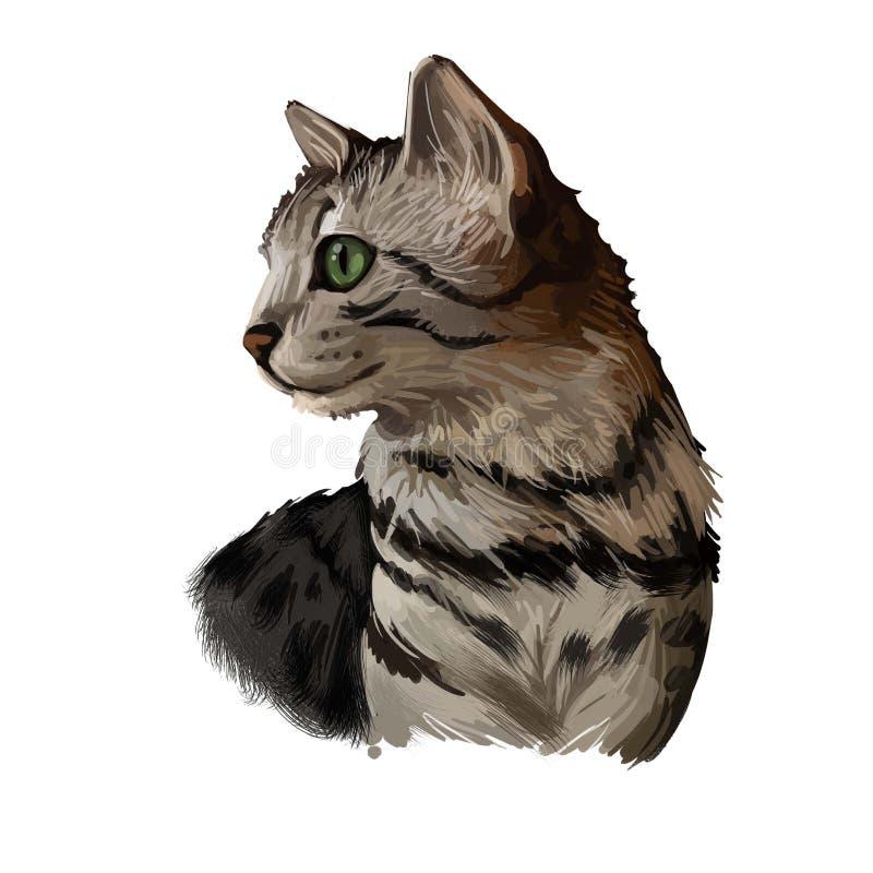 Karina / Sorath Egyptian-arabian-mau-cat-isolated-white-digital-art-illustration-hand-drawn-kitty-kitten-short-haired-medium-size-have-168834302