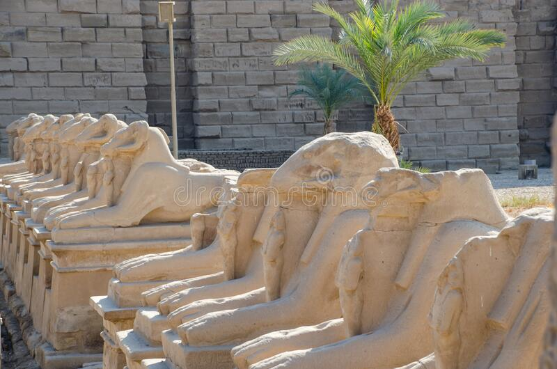 Egyptian Art. Karnak Temple. Avenue of sphinxes with ram`s head. Around Luxor. Egypt royalty free stock photo