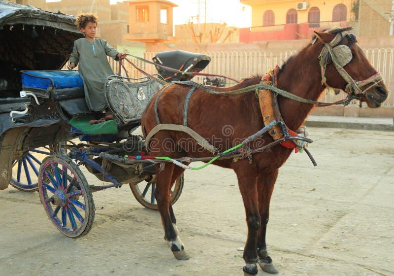 Egyptian boy stock image