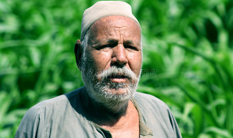poor Egyptian farmer in egypt royalty free stock image
