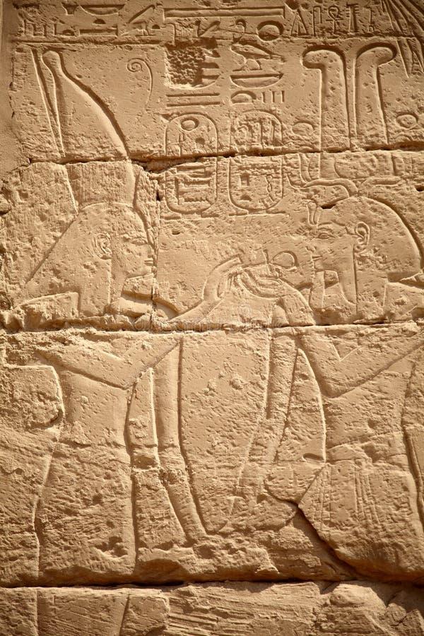 Download Egyptian hieroglyphs stock photo. Image of rock, luxor - 23799048