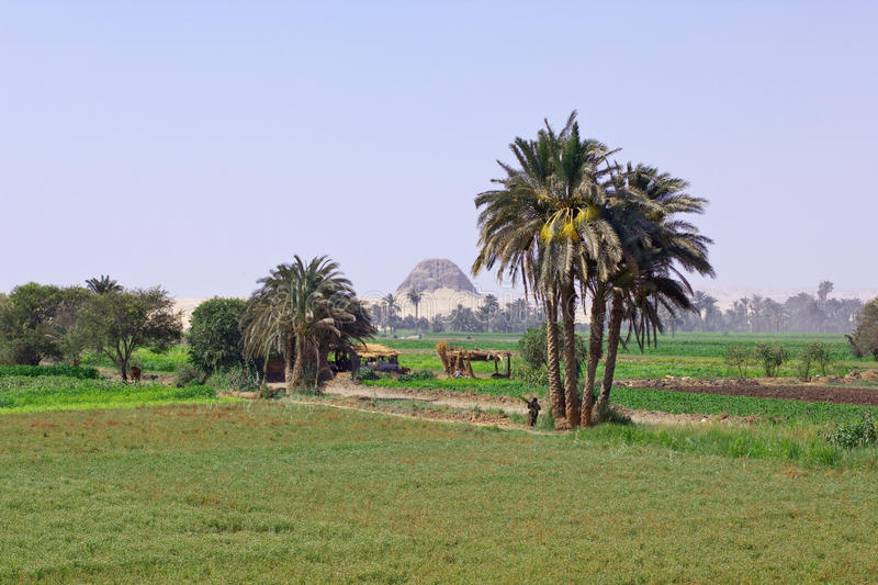 Egyptian landscape stock photo