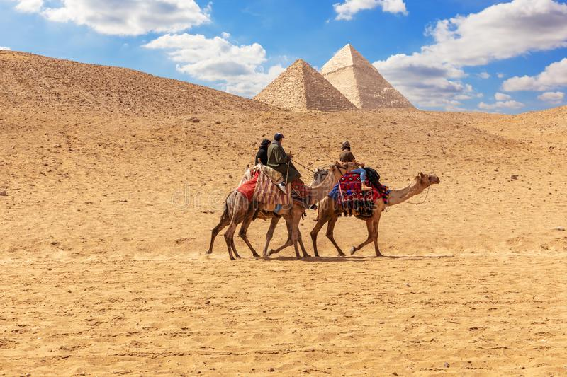 Egyptian men on camels in the sands of Giza near the Pyramids royalty free stock photography