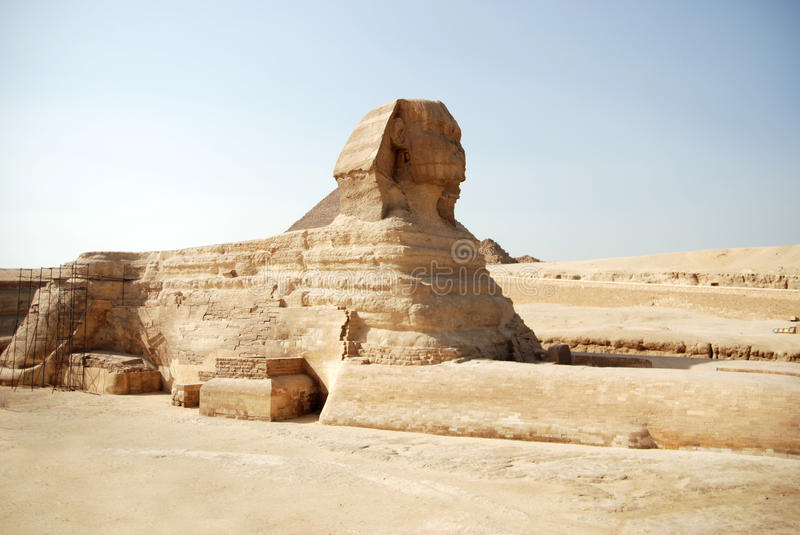 Egyptian sphinx in Cairo royalty free stock photo
