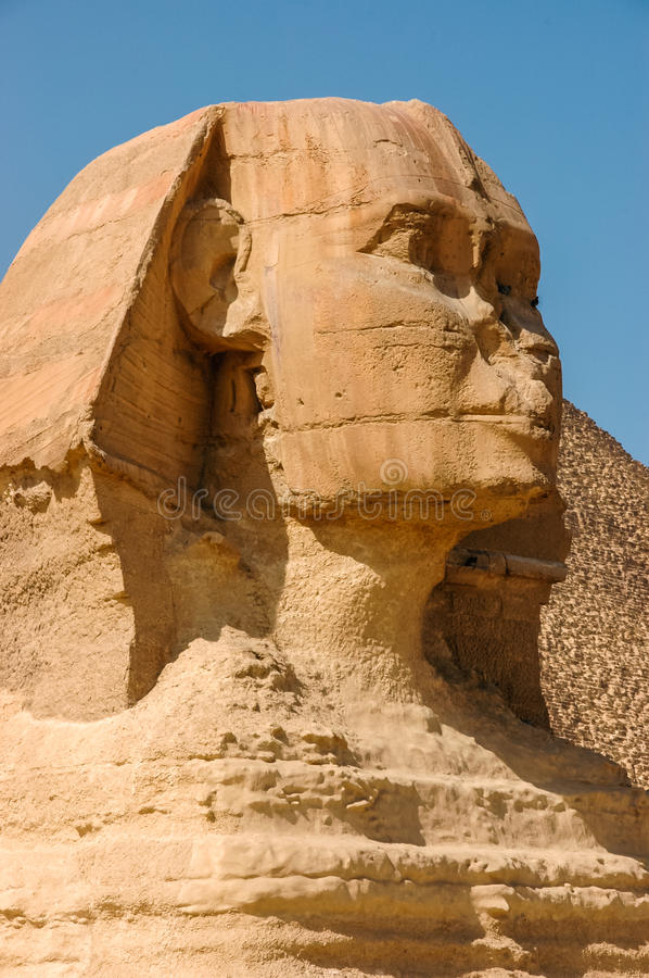 Egyptian Sphinx stock photo