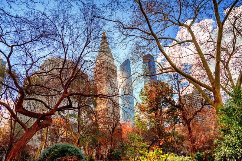 Cityscape of New York seen from across Madison Square Park , Manhattan, New York City. royalty free stock images