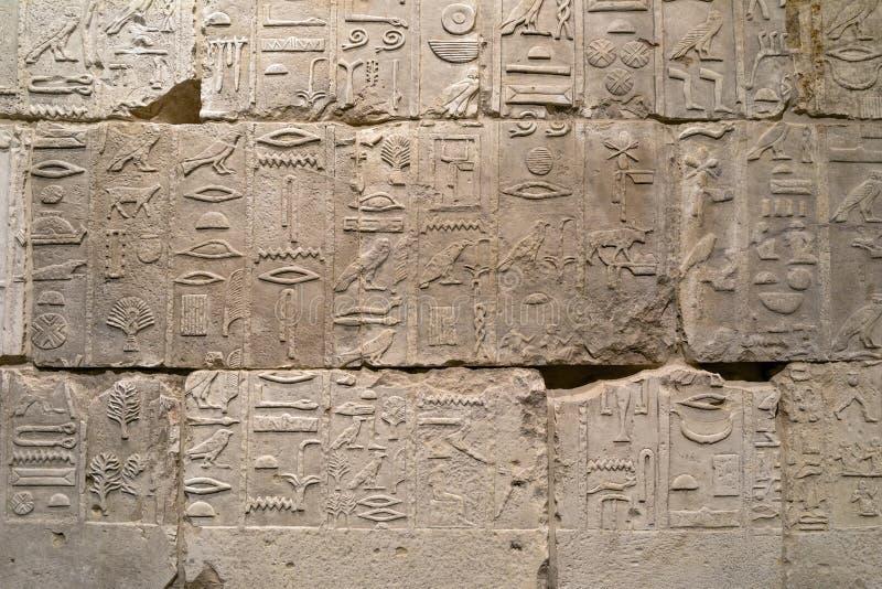 Egyptische hiërogliefen op de muur stock afbeelding