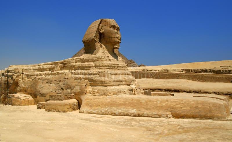 Egyptische sfinx stock foto's