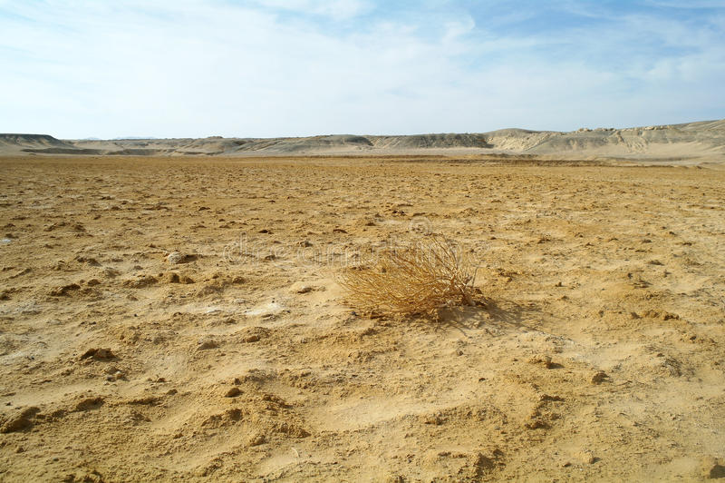 Egyptische woestijn en blauwe hemel stock afbeeldingen