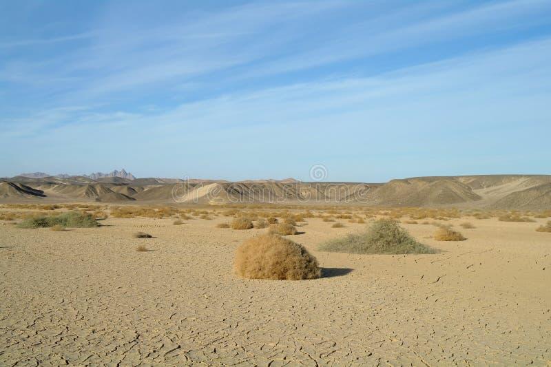 Egyptisk öken och himmel arkivbild