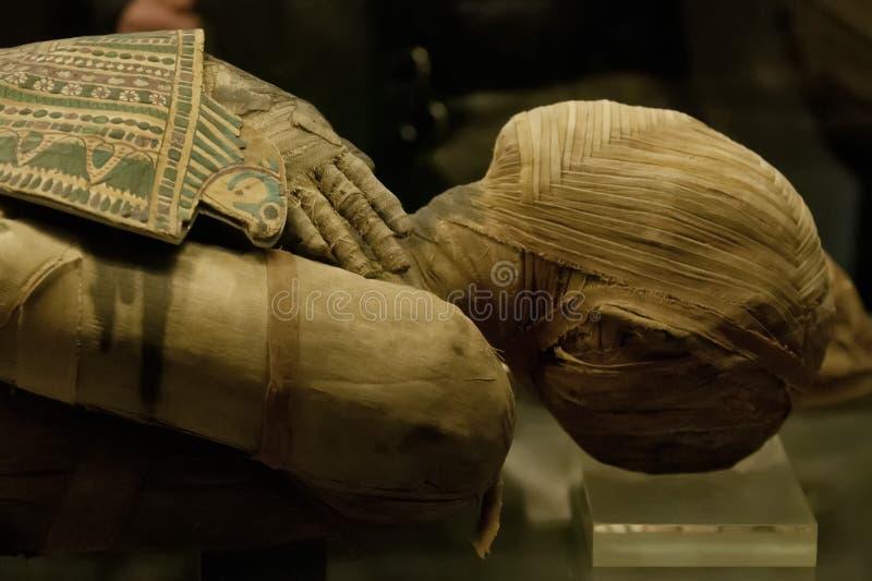 Egyptisk mamma arkivbild