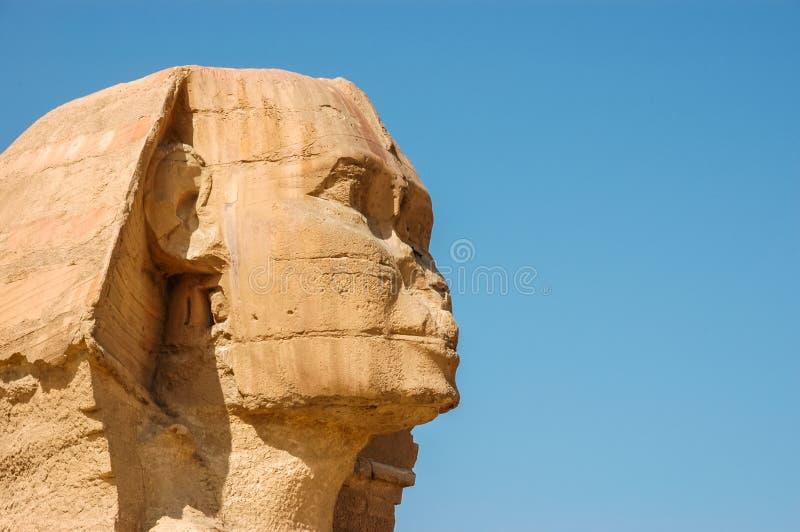 egyptisk sphinx arkivfoto