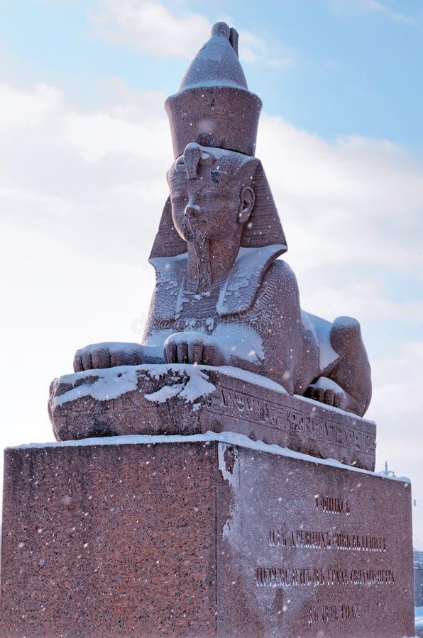 Egyptisk sphynx på kajen av den Neva floden i St Petersburg, Ryssland royaltyfri foto