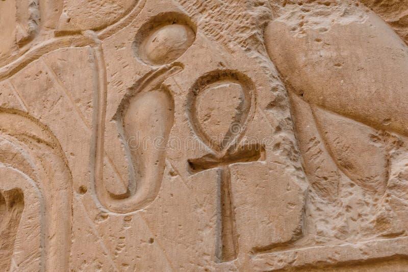 Egyptiska forntida hieroglyf p? stenar v?ggen Closeup av symbolet av ankh för evigt liv royaltyfria bilder