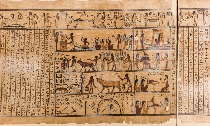 Egyptiska hieroglyf tecken på papyruset arkivfoton