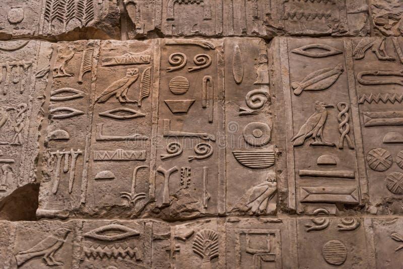 Egyptiska hieroglyf tecken på stenen fotografering för bildbyråer