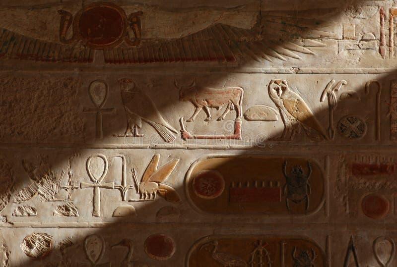 Download Egyptiska hieroglyphs arkivfoto. Bild av fluga, nytt, falk - 513696