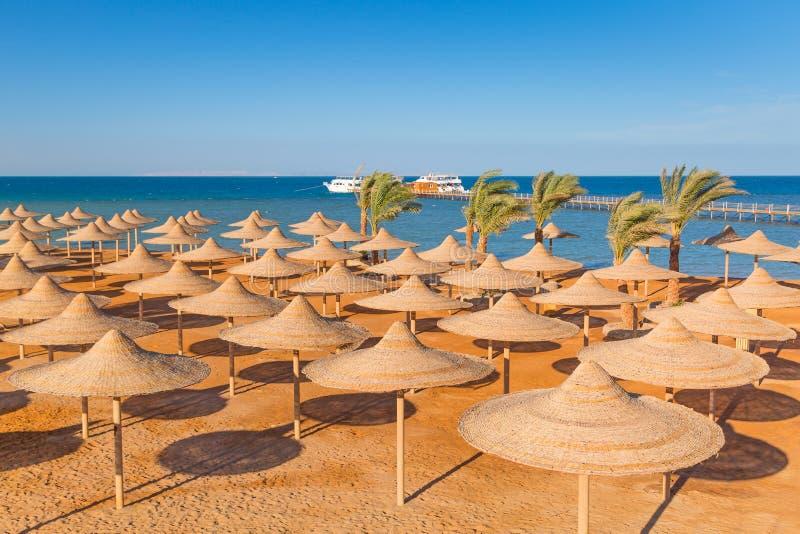 Egyptiska slags solskydd på stranden royaltyfri foto