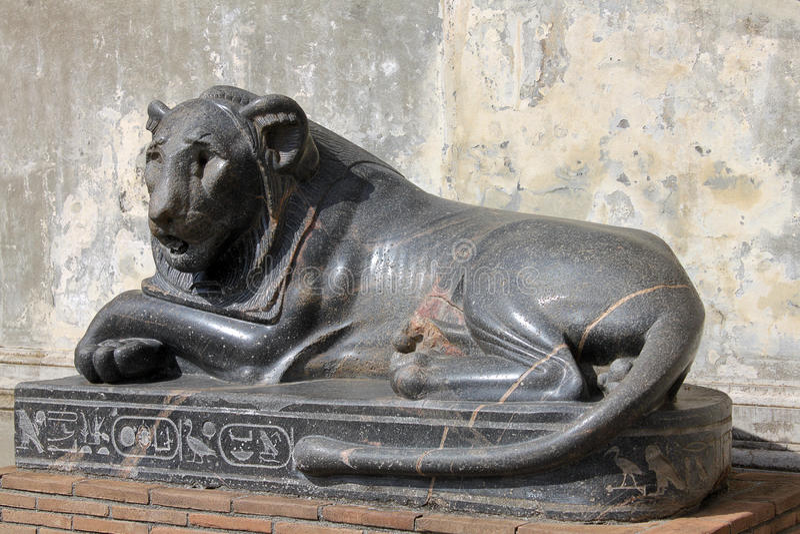 Egyptiskt lejon arkivfoton