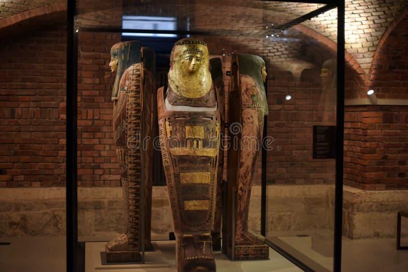 Egyptiskt museum, Berlin royaltyfri foto