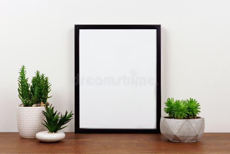 Egzamin próbny w górę czerni ramy przeciw biel ścianie z sukulent roślinami na drewnianej półce obrazy stock