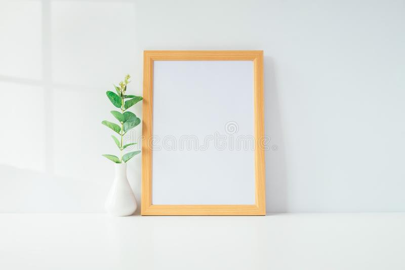 Egzamin próbny w górę portret fotografii ramy z zieloną rośliną na stole, domowy Dec fotografia royalty free