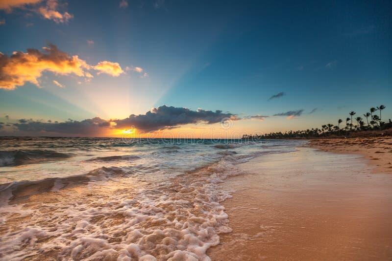 Egzot plaża w republice dominikańskiej, punta cana obrazy royalty free