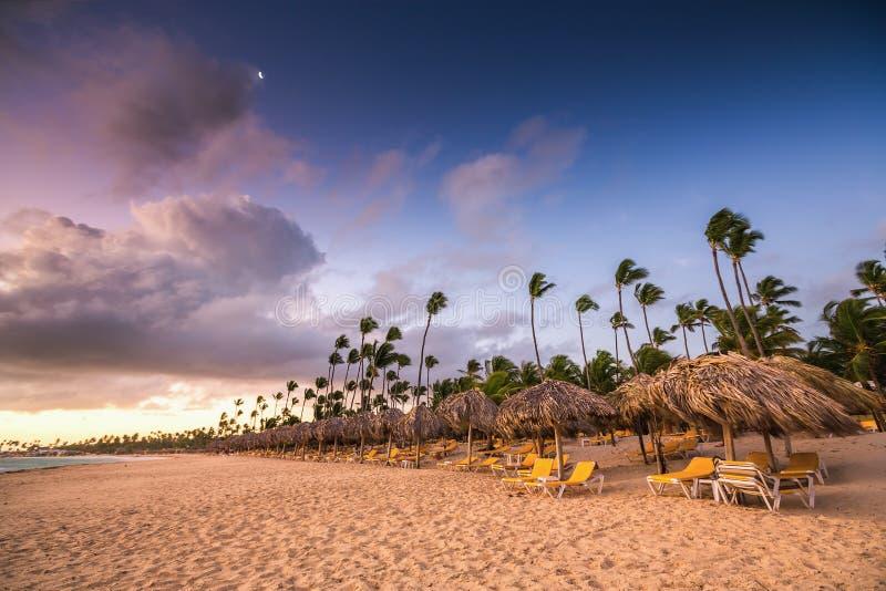 Egzot plaża w republice dominikańskiej, punta cana zdjęcie royalty free