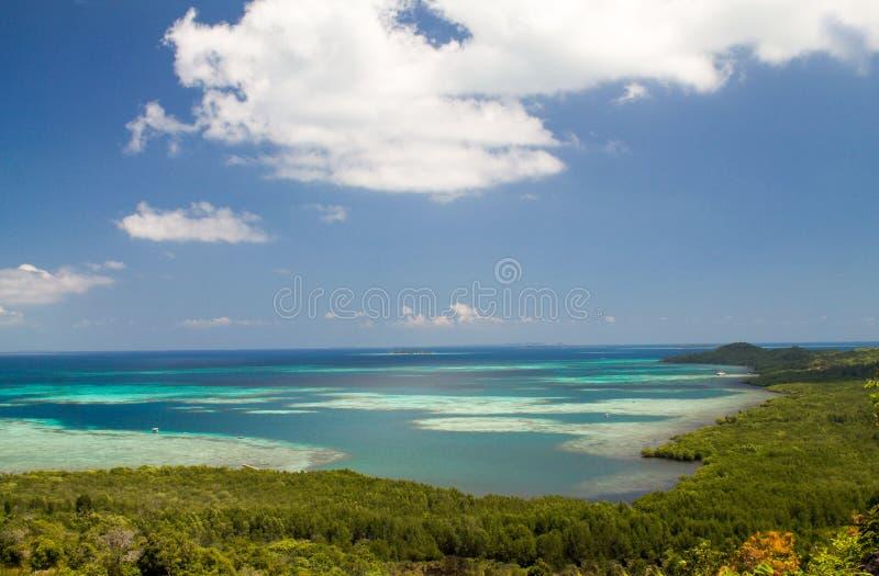 Egzot rafa w archipelagu Karimunjawa zdjęcia stock